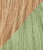 R25 Ginger Blonde Light Green