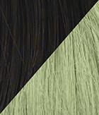 R4 Midnight Brown Light Green