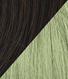 R6 Dark Chocolate Light Green
