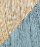 R22/Blue Swedish Blonde