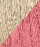 R22/Pink Swedish Blonde