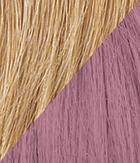 R25/Lavender Ginger Blonde