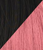 R4/Pink Midnight Brown